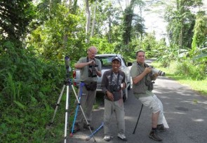 Birding_along_roaside_of_Weda_Halmahera_.JPG