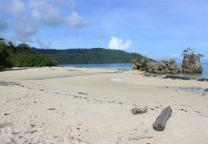 Birding_site_on_Bambarano_beach_Sabang_Central_Sulawesi_.JPG