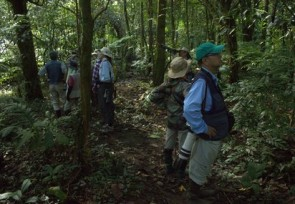 Scanning_birds_in_Tomohon_North_Sulawesi_.jpg
